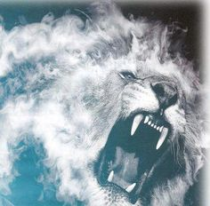 Jesus Returns to Earth at 2nd Coming as 'The Lion Of Judah' to The Battle of Armaggedon (He will not be a lamb this time!!!)