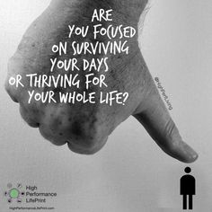 """Are you focused on surviving your days or thriving for your whole life?  We've reached the end of another 13 weeks and it's time to """"Put It All Together""""! So our focus this week is to help you get from survive to thrive. It's a """"forrest for the trees"""" scenario for most people because they are constantly thinking it will get better in the future, once they get over the next hurdle. But every hurdle leads to another and you never do anything to break the pattern. Well it's TIME to break it…"""
