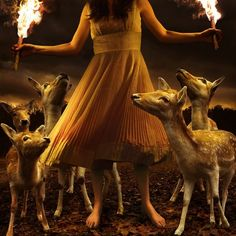 30x30 in Tom Chambers Burn to Shine -- You can get additional details at the image link.