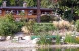 Seattle-area environmental consulting, environmental planning, and landscape architecture firm. Serving Washington since Landscape Elements, Green Landscape, Landscape Architecture, Seattle Area, Pacific Northwest, Sustainability, Washington, Environment, Backyard