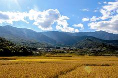 Paro valley of Bhutan in autumn.