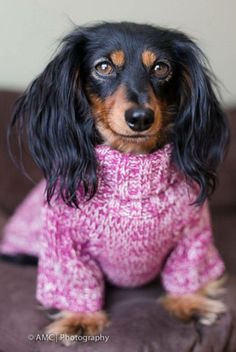 Even though she is super adorable in her pink sweater, I bet this little one is as sick of this snow and cold weather as I am!