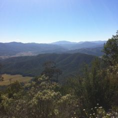 The view from about halfway up Mt Buffalo in Victoria, Australia. Victoria Australia, Alps, Buffalo, Challenges, Mountains, Nature, Travel, Naturaleza, Viajes