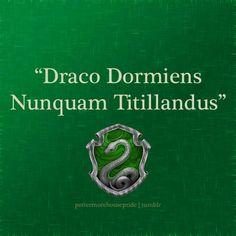 "Slytherin Pride - Hogwarts Motto ""Never Tickle a Sleeping Dragon"""