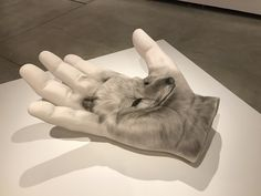 Vancouver Art Gallery, Animals, Animales, Animaux, Animais, Animal