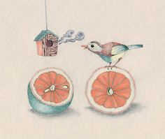 """Citrus Bird"" Art Print by Rabbits In The Sky on Society6."