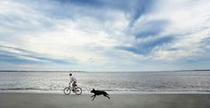 Check out the North Myrtle Beach Vacation Rentals In Myrtle Beach, SC. We rent Pet Friendly hotels with swimming pools. Pet Friendly Vacation Rentals, Myrtle Beach Vacation Rentals, Ocean Quotes, Beach Quotes, Carolina Beach, South Carolina, Lose Thigh Fat Fast, Seabrook Island, Atlantic Beach