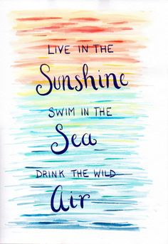 Live in the sunshine swim in the sea drink the by StxCreations