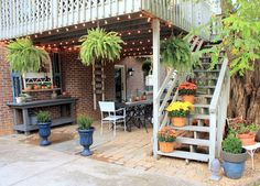 our fifth house: Bringing Fall to the Patio