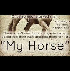 1000+ images about Horse Quotes on Pinterest | Horse ...