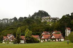 Monte Verde - Minas Gerais