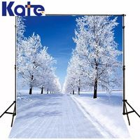 5Feet*6.5Feet Background Ground Icing Snowflakes Photography Backdropsthick Cloth Photography Backdrop 3241 Lk