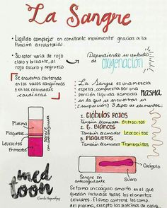 sangre Medicine Notes, Medicine Student, Studying Medicine, Med Student, Student Studying, Medical Science, Medical School, Tantra, Human Body Anatomy