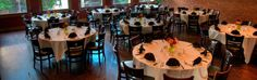 Mexican Restaurants and Margaritas Bar - Iron Cactus Mexican Grill