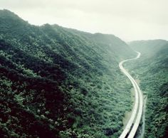 I want to see this in real life. Backpacking Asia, Forest Road, Oh The Places You'll Go, Kai, Natural Beauty, Real Life, Country Roads, Europe, River