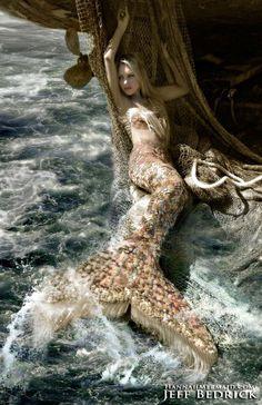 Mermaid Photo Shoot, Mermaid Pictures, Fantasy Mermaids, Real Mermaids, Scary Mermaid, Mermaid Mermaid, Mermaid Island, Professional Mermaid, Mermaid Artwork