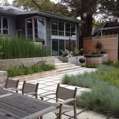 board formed concrete planters with equisetum, and wide steps
