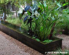 Water planter box