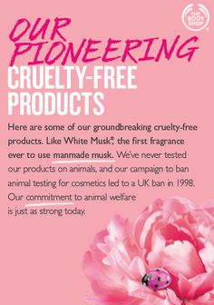 Discover cruelty-free skincare, makeup, fragrance and hair care products at The Body Shop. The first global beauty brand to fight against animal testing. The Body Shop Uk, Body Shop At Home, Eco Beauty, Sheer Beauty, Body Shop Skincare, Body Shop Tea Tree, Shopping Quotes, Beauty Book, Animal Testing