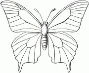 Butterfly Outline Coloring Page Butterfly Coloring Pages Free Coloring Pages. Butterfly Outline Coloring Page Coloring Page Outline Of Cartoon Little . Butterfly Coloring Page, Tree Coloring Page, Animal Coloring Pages, Colouring Pages, Printable Coloring Pages, Coloring Pages For Kids, Coloring Sheets, Kids Coloring, Free Coloring