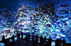 Visitors stand in front of the monumental panoramic artwork 'Great Barrier Reef', which is printed on cloth widths, of artist Yadegar Asisi during a press preview at the Asisi Panometer in Leipzig, central Germany, Friday, Oct. 2, 2015. On a 1:1 scale, the panorama presents the unique underwater world of the coral reef off the coast of Australia in all its fragile beauty and complexity. The exhibition opens for visitors on Oct. 3, 2015.