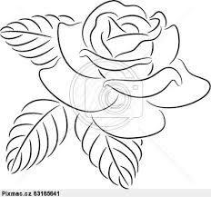 růže ilustrace - Hledat Googlem