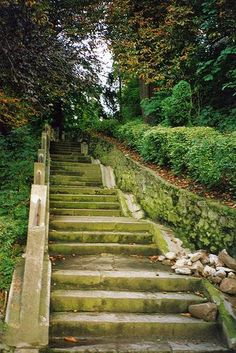 Transylvania stairway to the Cemetery on Flickr - Photo Sharing!