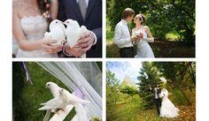 Betekenis van bruidsduiven