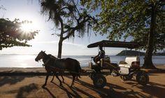 A Ilha de Paquetá com as suas praias e passeios de charrete Foto: Daniela Dacorso / Agência O Globo