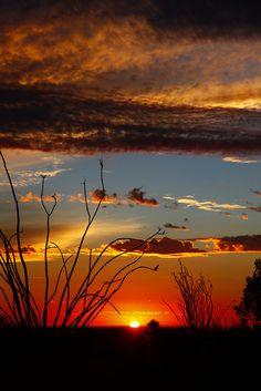 landscape photography black and white Sunrise Photography, Landscape Photography Tips, Nature Photography, Photography Jobs, Photography Reflector, Morning Photography, Photography Articles, Photography Studios, Happy Photography