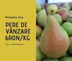 Fresh Fruits And Vegetables, Pear, Canning, English, English Language, Home Canning, Bulb, Conservation