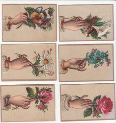 hands holding flowers tattoo - Sök på Google