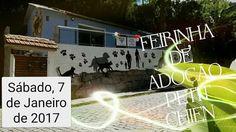 BONDE DA BARDOT: RJ: Sábado tem Campanha de Adoção na Pet Shop Petit Chien, em Petrópolis (07/01)