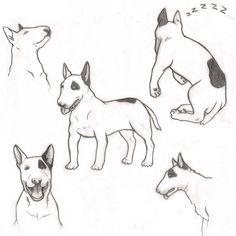 Bull Terrier by SunlessDay on DeviantArt Bull Terrier Funny, Fox Terrier, Body Template, Bully Dog, Cute Corgi, English Bull Terriers, Happy Art, Cute Animal Pictures, Dog Art