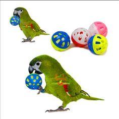 Clp 195 Mascota Loro Juguete Pajaro Campana Hueca Bola Para Parakeet Cockatiel Masticar Divertido Jaula Juguetes Parrot Toys Bird Toys Pet Toys