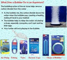 Bubbler for turtle habitats - healthy and makes a turtle happy . Pet Turtle Care, Turtle Facts, Turtle Aquarium, Turtle Habitat, Aquatic Turtles, Red Eared Slider, Les Reptiles, Diy Speakers, Reptile Cage