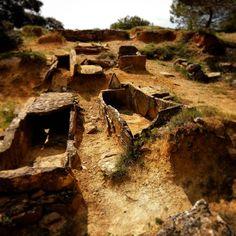 Cimetière wisigoth de Villarzel-Cabardès près de Carcassonne. Le repos en pleine nature... Visigothic graveyard near Carcassonne... #aude #audetourisme #payscathare #jaimelaude #languedoc #occitanie #occitania #france #jaimelafrance #lovefrance #magnifiquefrance #cimetière #graveyard #cemetery #tombe #grave #wisigoth #monument #vestige #patrimoine #heritage #cabardès #cementerio #cementiri #friedhof #groblje #begraafplaats