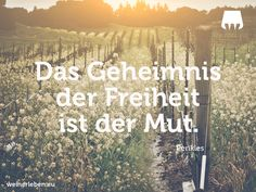 #wein #weinerleben