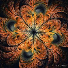 Splits-Elliptic Orange by ~Yuline