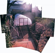 Blackstock Green House with the poly-tunnel. Finsbury Park, Opera House, Building, Green, Pictures, Travel, Image, Photos, Viajes