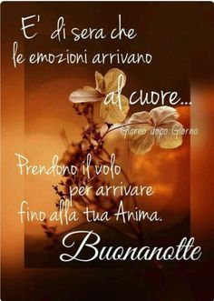 Good Morning Good Night, Day For Night, Belle Photo, Pictures, Dolce, Italian Phrases, Anna, Album, Facebook