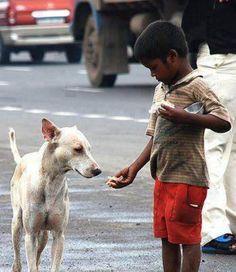 Niño en la India da de comer a un perro callejero