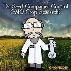 Do Seed Companies Control GMO Crop Research? Learn More Here: http://www.scientificamerican.com/article.cfm?id=do-seed-companies-control-gm-crop-research
