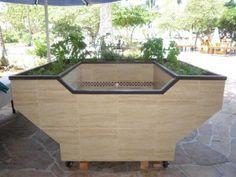 Clean aquaponics system.
