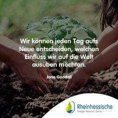 Welchen Einfluss übt ihr aus? #Zitate #JaneGoodall #Umweltschutz #Sprüche #Tierschutz Jane Goodall, Environmentalism, Animal Welfare, Quotes