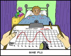 Sine Flu