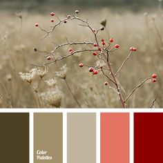 Color Palette #3004 More