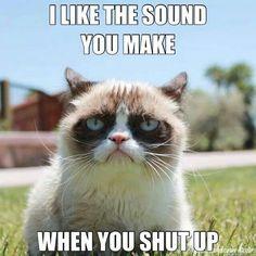 Hahahahahha grumpy cat memes are pretty great! :P