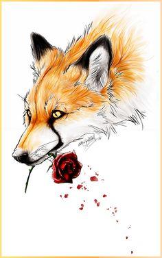 Cool fox
