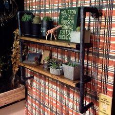 水道管/ステンシル/サボテン/セメント/エアプランツ/植物…などのインテリア実例 - 2014-06-12 20:13:24   RoomClip(ルームクリップ)